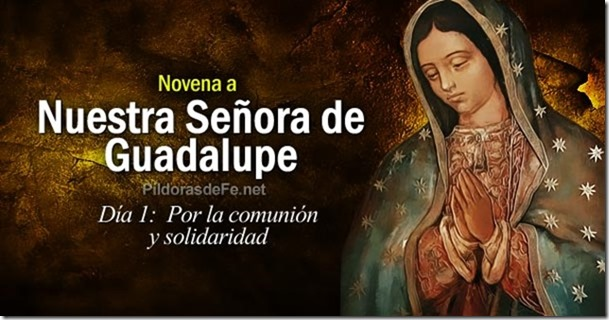 novena-virgen-guadalupe-dia-1-por-comunion-solidaridad
