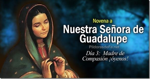 novena-virgen-guadalupe-dia-3-madre-compasion-oyenos