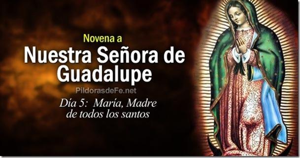 novena-virgen-guadalupe-dia-5-maria-madre-todos-los-santos
