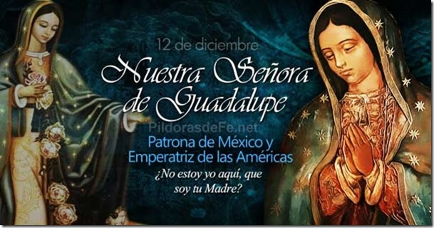 the significance of nuestra senora de guadalupe in mexico The day of the virgin of guadalupe (día de la virgen de guadalupe) is a popular  catholic feast that celebrates the belief that a man encountered the virgin mary.
