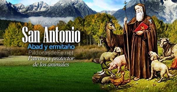Resultado de imagen de SAN ANTONIO ABAD