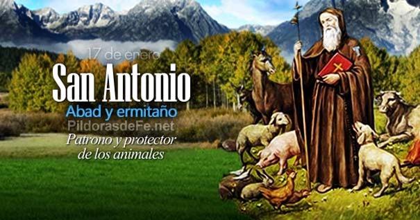 17-01-san-antonio-abad-patrono-protector-animales