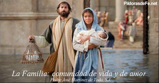 familia-comunidad-vida-padre-toda