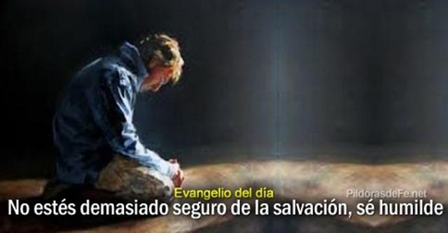 evangelio-Mateo-13-54-58-ninguno-profeta-tierra-familia-despreciado